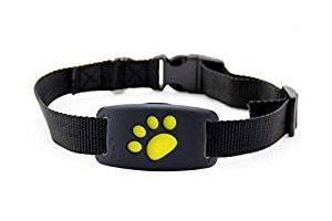 collar-para-perro-con-gps collares para perro con gps