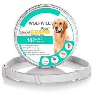 collares-para-perros-antiparasitarios