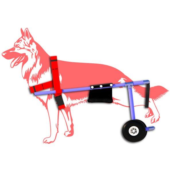silla-de-ruedas-perro-grande