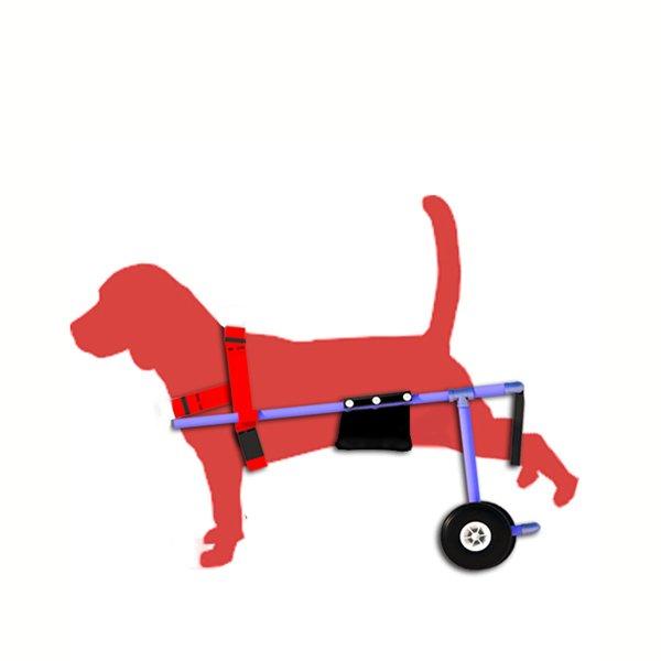 silla-de-ruedas-perro-pequeño